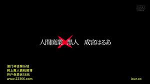 DVAJ-128 Human Beings Out Of Business × Black Narimiya Harua