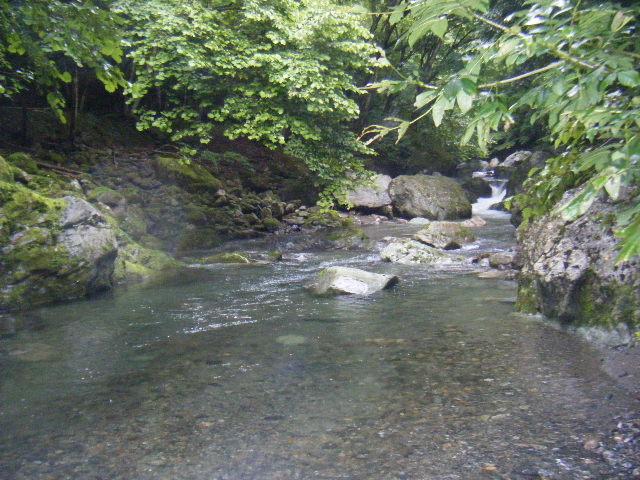 daihara namie
